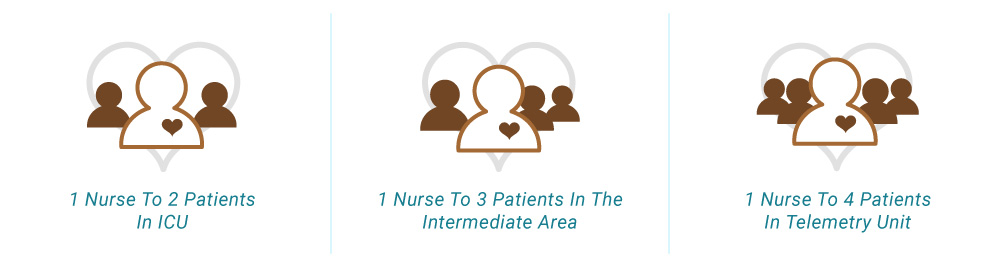 kansas-heart-hospital-nursing-model-1